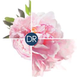 DrRenaud-Brevetto esclusivo